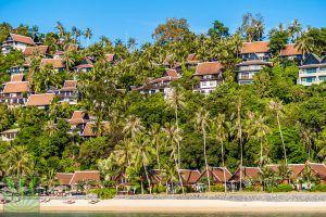 rent thailand