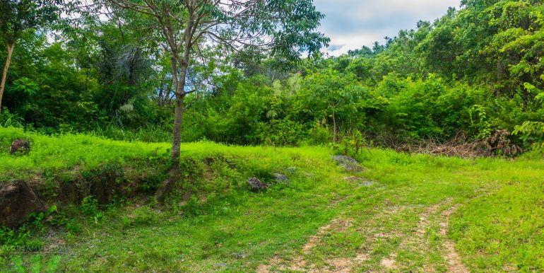 l138-land-chaweng-noi-26