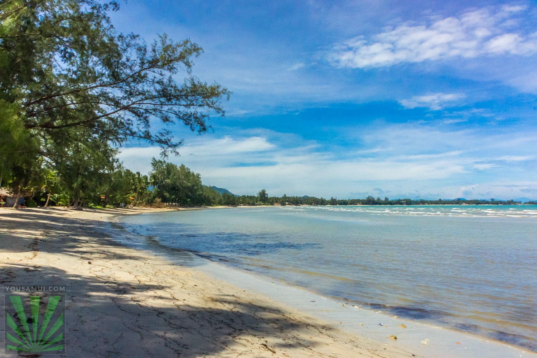 L164 Земля в Липа Ной — на пляже