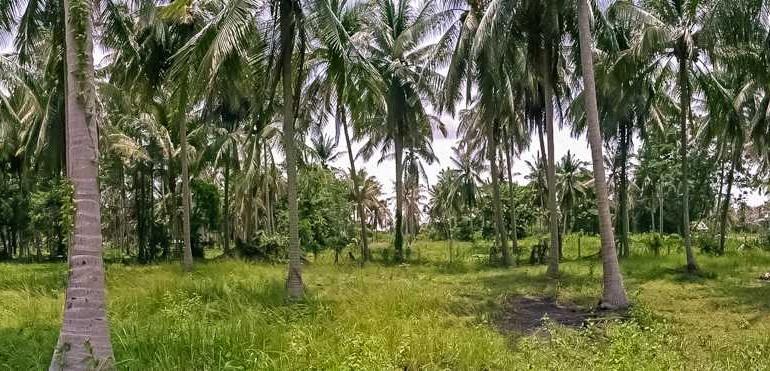 l104-land-ban-thalay-05
