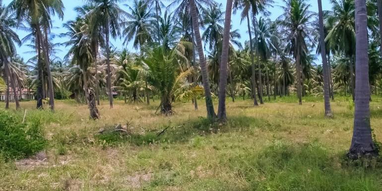 l104-land-ban-thalay-07
