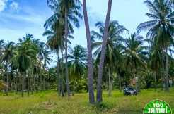 land-ban-thalay-l104