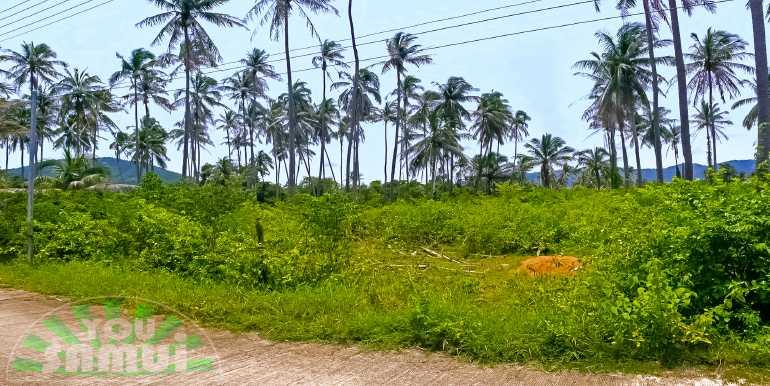 l105-land-ban-talay