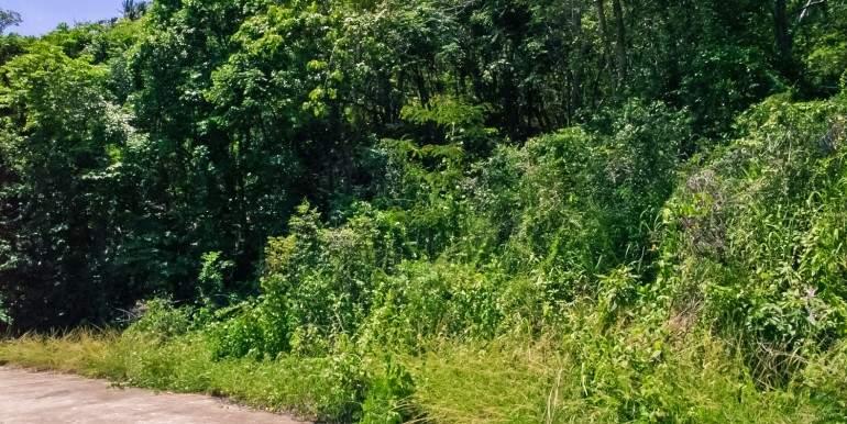 l120-land-namueang-hill-05