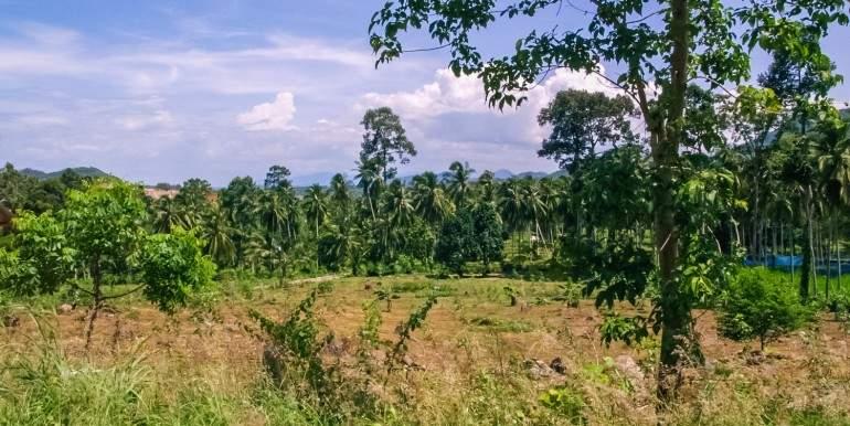 l120-land-namueang-hill-09